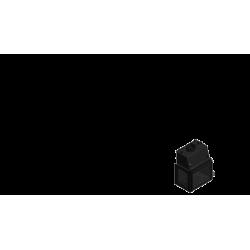 infire-insignio